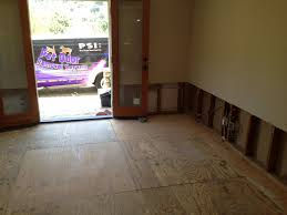 Laminate Flooring And Pet Urine Home Inspection Pet Odor Removal Service