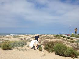native plants los angeles how native plants protect your beaches rivers and oceans u2013 g3