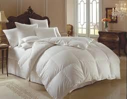 Down Comforter Protector Downright Himalaya 700 Polish White Goose Down Comforter U0026 Down