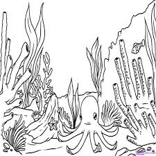 reef plants coloring pages coloring page fish coral 3d art