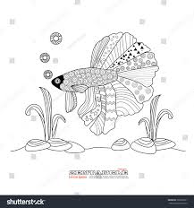 fighting fish drawing coloring bookbetta fish stock vector