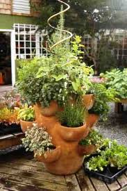Herb Garden Pot Ideas How To Plant Herb Pots Growing Plants Herbs And Plants