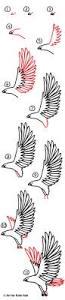 how to draw a realistic hawk art for kids hub