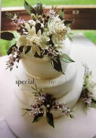 edible native australian plants native sugarcraft flowers google search oz cakes pinterest