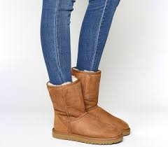 of the ugg boot ugg ii boots chestnut suede ankle boots