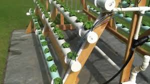 homemade vertical a frame hydroponic system facebook https www
