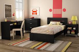 Small Bedrooms With 2 Twin Beds Amazon Com South Shore Flexible Collection Twin Bed Black Oak