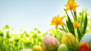 colorful easter eggs clipart wallpaper