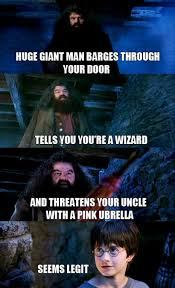 Hilarious Harry Potter Memes - who would ever question it harry potter harry potter memes and