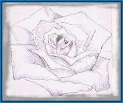 imagenes de amor para dibujar grandes imagenes de flores para dibujar a lapiz grandes archivos dibujos