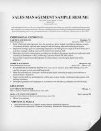 sales resume format sales manager resume format sales manager resume sle expert