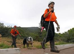 Resume Finder For Employers The Latest Crews Headed To Scene To Resume Search For Boy