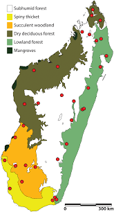 Madagascar Map Fig 1 Map Of Terrestrial Ecoregions Of Madagascar Circles