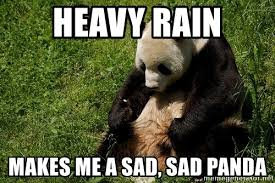 Sad Panda Meme - heavy rain makes me a sad sad panda sad panda eddie meme generator
