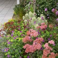 Bellevue Botanical Garden Lights Bellevue Botanical Garden I Waterwise Garden