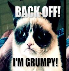 Grumpy Meme - back off i m grumpy grumpy cat know your meme
