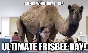 Ultimate Frisbee Memes - funny for frisbee memes funny www funnyton com