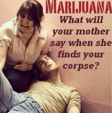 Marijuana Overdose Meme - 15 hilariously ridiculous pieces of anti marijuana propaganda