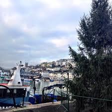 christmas tree sophie is u2026