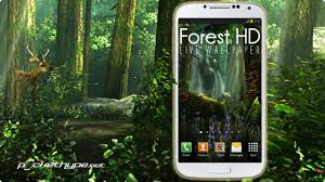 forest hd apk free forest hd live wallpaper
