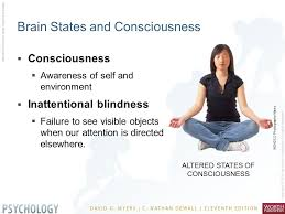 Blindness Chapter Summaries Chapter Overview Brain States And Consciousness Sleep And Dreams