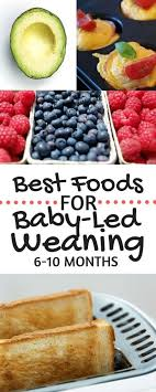 table food for 9 month old best 25 baby led weaning ideas on pinterest baby finger foods
