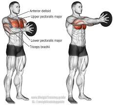 Muscles Used When Bench Pressing Svend Press A Compound Push Exercise Main Muscles Worked Lower
