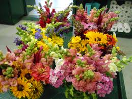 farm fresh flowers hindingers farm farm fresh produce in hamden ct