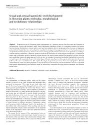 sexual and asexual apomictic seed development in flowering