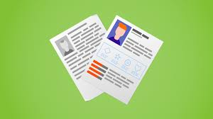 Best Resume You Ve Ever Seen by 15 Creative Resume Examples That Will Land The Job