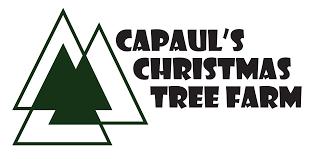 capaul u0027s christmas tree farm wisconsin choose n cut christmas