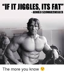 Arnold Gym Memes - if it jiggles its fat arnold schwarzenegger the more you know