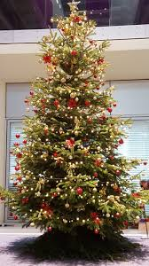 christmas tree office christmas tree paso evolist co