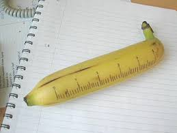 Banana For Scale Meme - bananana banana for scale know your meme