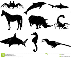 animals royalty free stock images image 5766299