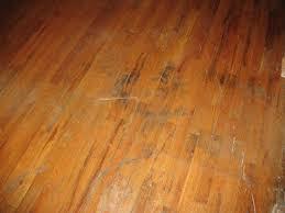 wood floor my purple carpet floors heater vacuum