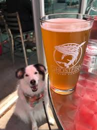 Seattle Breweries Map by Dogs On Tap U2022 Lifestyle Dog And Craft Beer Blog Brewery