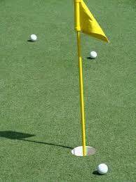 How To Make A Putting Green In Backyard Diy Outdoor Carpet Putting Green Still Want To Do Pinterest
