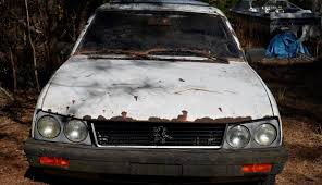 peugeot 505 coupe trapped by trees 1981 peugeot 505