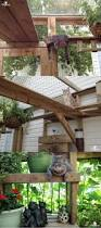 Instructables Cat Tree by How To Build A Catio For Your Cat How To Build The Picture And