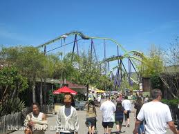 Six Flags Dolphin Swim Six Flags Discovery Kingdom Theme Park Archive