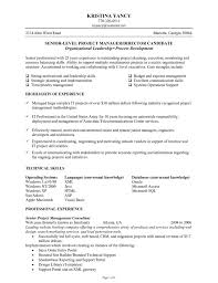 Project Management Sample Resume by Senior Level Project Manager