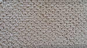 warm neutral carpet colours carpet vidalondon