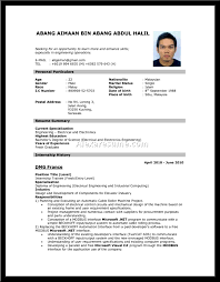 sample federal government resume sample resume for government job in malaysia frizzigame cover letter government sample resume government resume sample pdf