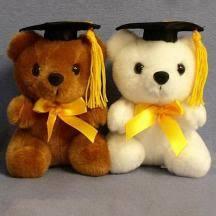 graduation bears wholesale and retail graduation bears