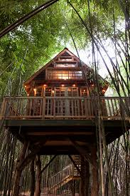 Atlanta Luxury Rental Homes by 22 Best Atlanta Alpaca Bamboo Tree House Images On Pinterest
