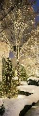 best 25 christmas scenes ideas on pinterest fishbowl christmas