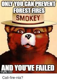 Only You Can Prevent Forest Fires Meme - onlyyou can prevent forest fires smokey and you ve failed fire