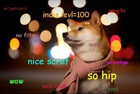 Hipster Dog Meme - go home internet you re drunk wtf is dogecoin autostraddle