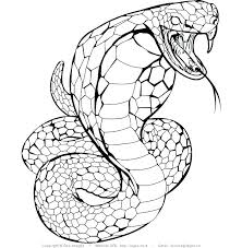 rattlesnake coloring page pages of a snake with snakes designs 18